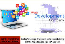 HOW TO OPT FOR THE BEST WEB DESIGN DUBAI COMPANY?